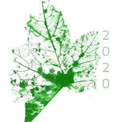 Ecology, Politics and Urbanism.